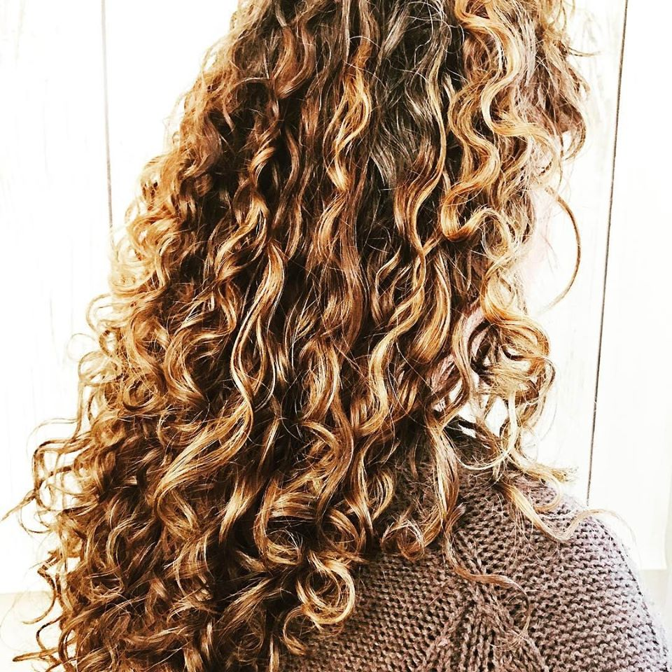 colored curly hair highlights