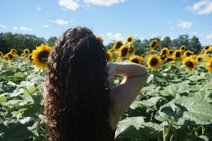 summery curls curl boutique sunflowers